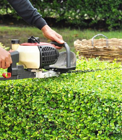 Greenkeepers Gartenbau - Pflegearbeiten für Ihre Grünanlage